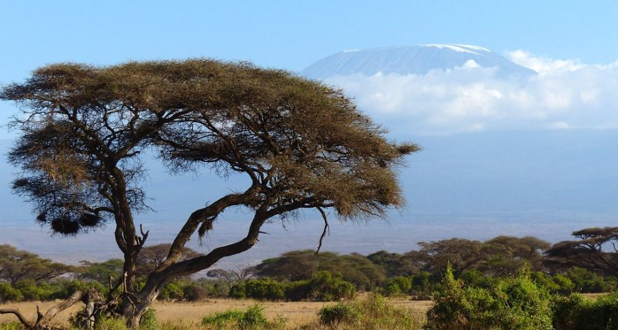 Kilimanjaro, Kenya - legal facts and laws