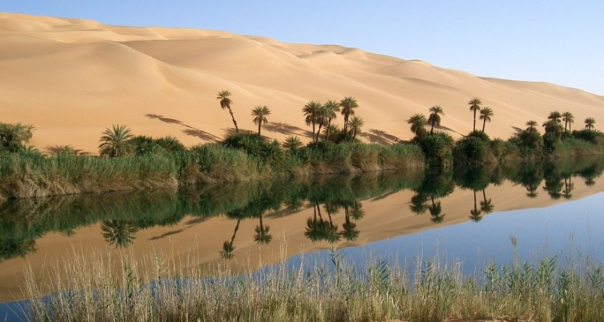 oasis in Libya - legal facts and laws